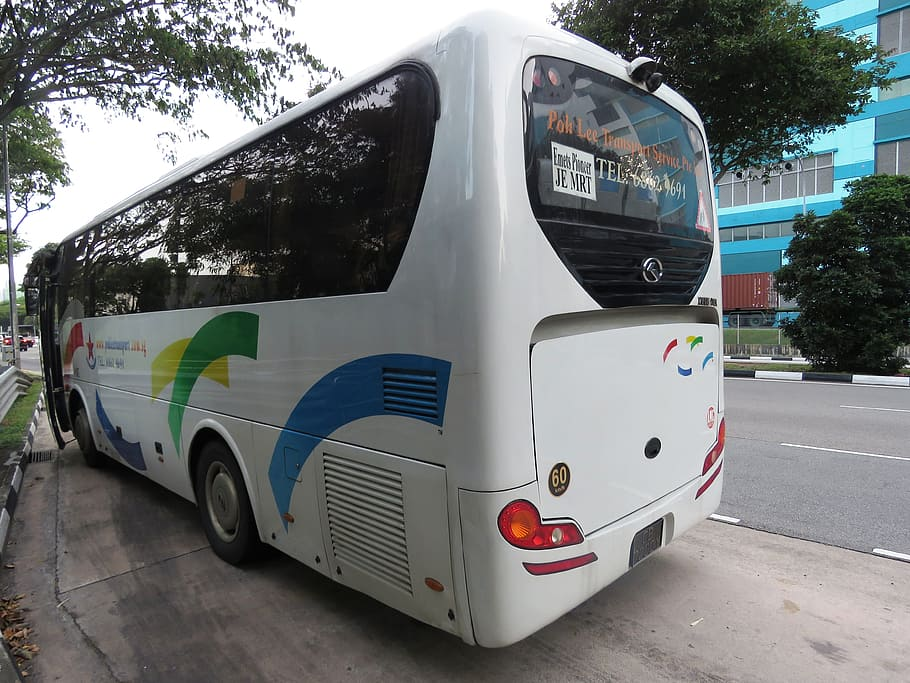 white, bus, parked, road, Bus Stop, Singapore, Private, private bus, travel, travelling